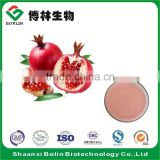 Bulk 100% Natural Fresh Pomegranate Fruit Juice Powder