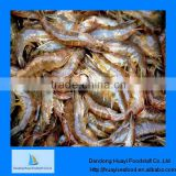 frozen shrimp fresh water shrimp wholesale