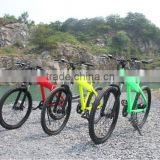 Rainbow-2014 New model pedelec sport style MTB li ion battery 36v 250w electric bike kit
