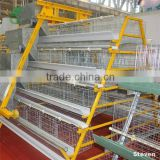 Automatic control shed poultry farm equipment supplier with free egg layer cage draft design