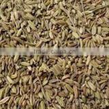 100% natural Fennel seed extract
