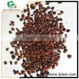 Hot China Products Wholesale seabuckthorn
