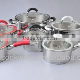 Professional Stainless Steel Cookware/Kitchenware for Induction with color silicone handle