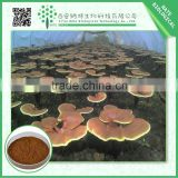 Hot Sale Products Natural Ganoderma Lucidum Extract 80%by HPLC
