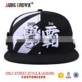 High quality embroidery snap back hat and cap puff embroidery cap