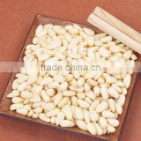 Chinese wholesale dried Pine nuts in bulk, good price