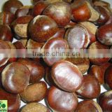 Chestnuts Super Quality in China