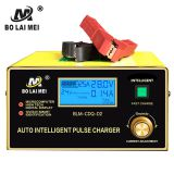 High voltage electric vehicle engine 24 volt battery charger