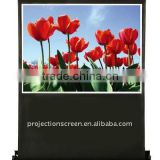 Portable floor up projector screen with hydraulic damping equipment