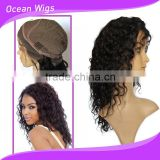 long Curly Wigs For Black Women, Malaysian Human Hair Kinky Curly Full Lace Wigs