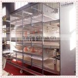 Poultry farming equipment baby chicken brooder/chicken cage for sale