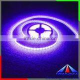 indoor disinfection and sterilization flexible led strip, UV ultraviolet led strip light for restuarant
