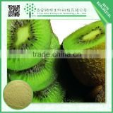 Hot selling 100% pure natural kiwi fruit extract/free sample kiwi extract powder/low price kiwi juice powder