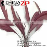 Leading Supplier CHINAZP 4-6inch Length Colored Taupe Stripped Coque Rooster Tail Feathers