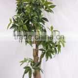 China hot sale evergreen fake money tree ,artificial Pachira