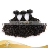 New Arrived Raw Unprocessed Women Hair Brazilian New Funmi Curly Hair