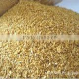 Chicken Feed for Chinese Corn Germ Meal