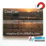 Tin Fridge Magnets Tourist souvenir Dead sea