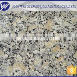 new style gansu granite of autumn gold yellow bee stone on sale