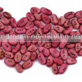 Magic Bean, Wishes Seeds, Engraved Bean