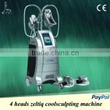 Cryolipolysis cold laser,Latest non-invasive&non-surgical technology