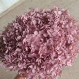 DIY Glass Dome Filling Supplies 20g Real Preserved Hydrangea Macrophylla
