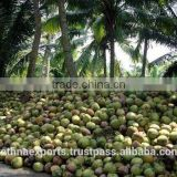 Natural Food Additive No Preservatives Flavouring Enhancer Coconut