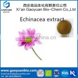 Manufacture supply 100% Natural Echinacea Purpurea Extract Polyphenols Extract powder 2% chicoric acid