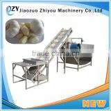 Automatic Dry garlic peeling machine/garlic skin removing machine/garlic clove peeler 0086 15639144594