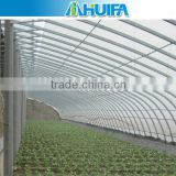Solar underground Greenhouse For Tomatoes