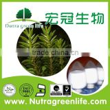 GMP herb extract manufacturer supply high quality 100% pure natural huperzia serrata extract huperzine a 99%