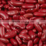 Chinese Dark Red kidney beans price