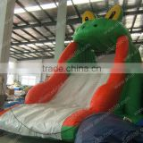 garden mini water slide for sale, inflatable playground water slide, water sliding slide for kids