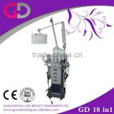 2014 Nguangzhou 17 In 1 Salon Swing Arm Multi-Function Beauty Equipment Machines Skin Care Skin Inspection