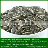 2015 New Crop 5009 Roasted and Salted Sunflower Seeds for sale