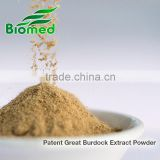 Burdock Extract powder -Health care supplement