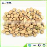 Chinese Broad Beans for hot sale and Green Broad Beans for hot sale to all over the world