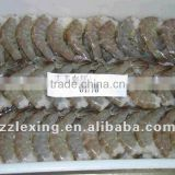 frozen vannamei white shrimp