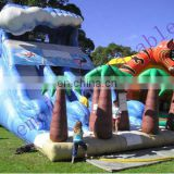 coco water slide, big inflatables,inflatable slide WS001