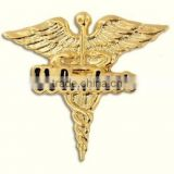 Volunteer Caduceus Wings Lapel Pin Medical Hospital Recognition Volunteers New