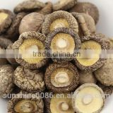 High Quality Dried Shiitake Mushroom extract prices for shiitake