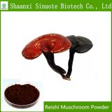 Factory Supply High Quality Reishi Muschroom Powder 30-50% Polysaccharide