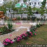 Outdoor Wholesale Natural River Pebbles for Garden art and other advanced superstructure