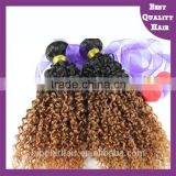 New arrival! 2016 Afro remy curly human hair wigs/weft/extension for black women peruvian and malaysian hair