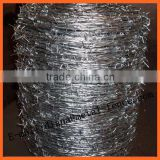 Hot Dipped Galvanized Weight of Barbed Wire/Hot Dip Galvanized Barbed Wire Price Per Roll/Barbed Wire