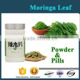 High Quality 100% Natural Moringa Leaf Extract Powder /tablets/pills in bulk OEM