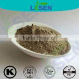 Factory Supply High Quality Wasabi Horseradish Root Extract 5:1 10:1 20:1