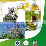 Natural & pure borage oil bulk with superior quality, factory supply borage seed oil