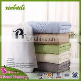Wholesale Custom Thicken Solid Color Five-Star Hotel 100% Cotton Bath Towel