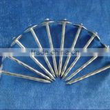 Galvanized Umbrella Head Roofing Nails With Smooth/Twist Shank by Low Price                                                                         Quality Choice                                                     Most Popular